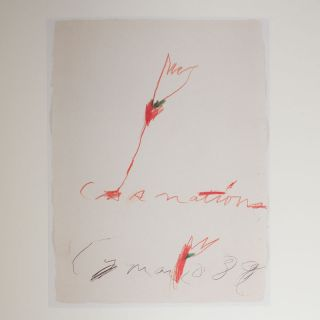 Audible Silence: Cy Twombly at Daros